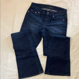 Joe's Jeans Rocker in Naomi Wash size 26 Boot Cut